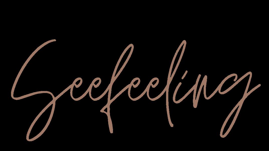Logo_Seefeeling